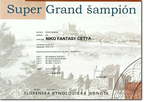 NIKO Fantasy Cetya - SUPER GRAND ŠAMPIÓN